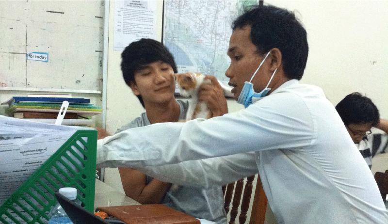 Preparedness of colleagues